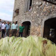 Ramírez Marín propone rescate integral de la industria henequenera