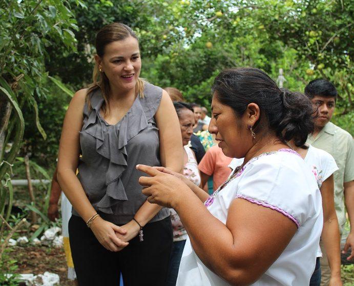 Jardines botánicos, opciones para el autoempleo