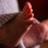Escondió los cuerpos de cinco bebés en un congelador