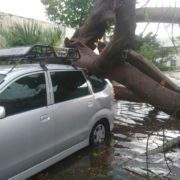 Atienden afectaciones por lluvia y vientos fuertes en Mérida