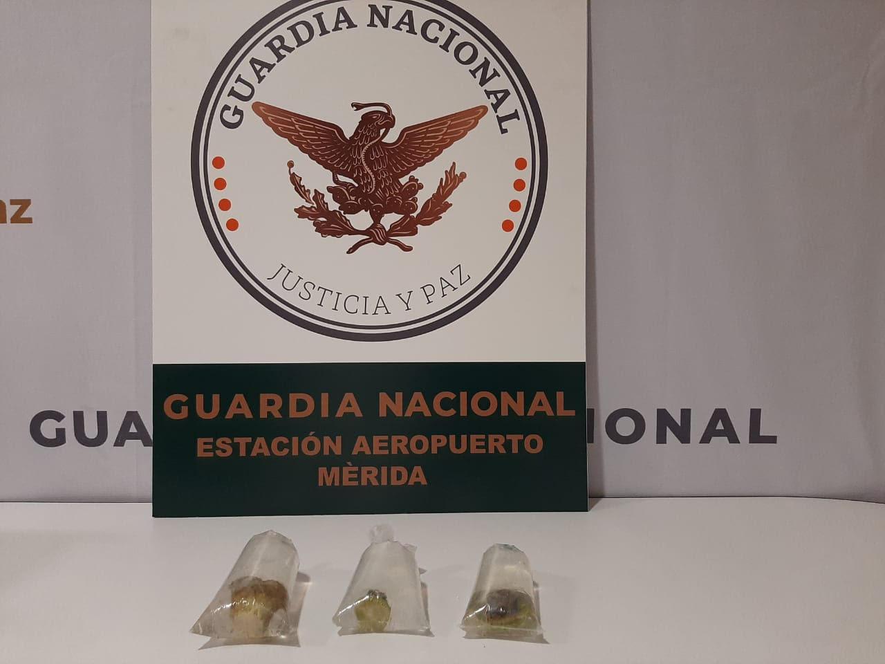 Photo of Aseguran anémonas en el Aeropuerto de Mérida