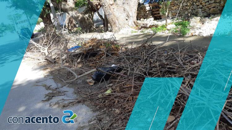 Photo of Vecinos acusan a la CFE de dejar sucias las calles