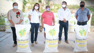 Photo of El Gobierno del Estado continúa con la entrega de azúcar para reactivar e impulsar la actividad apícola en el estado