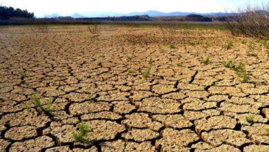 Photo of Ni el covid lo impidió: 2020 fue el año más caluroso en México y hubo récord de ciclones