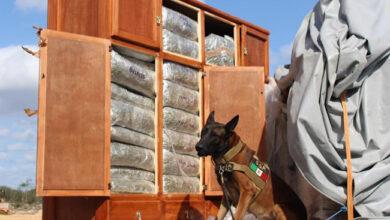 """Photo of Aseguran 450 kilos de marihuana en roperos de """"mudanza"""""""
