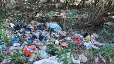 Photo of Iniciativa privada y municipio, unirán fuerzas para limpiar y recuperar espacios públicos en Tekax