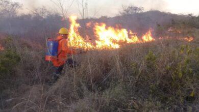 Photo of Llama Procivy a la sociedad yucateca contribuir a la prevención y control de incendios