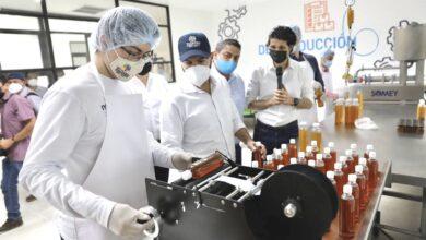 Photo of Emprendedores yucatecos reciben asesoría para impulsar sus negocios