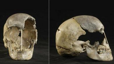 Photo of Un cráneo de hace 45.000 años permite identificar el genoma más antiguo de los humanos
