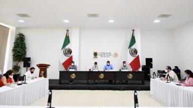 Photo of Aprueban iniciativas para modificar la Ley para la Protección de la Fauna de Yucatán