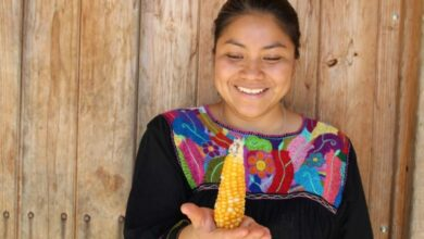 Photo of Claudia, indigena tzotzil, entre los los 50 mejores chef del mundo