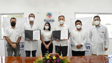 Photo of Yucatán une esfuerzos con Japón para brindar mejor atención médica a los yucatecos