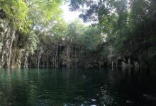 Photo of Inauguran humedal artificial en cenote de Yokdzonot