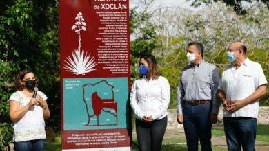 Photo of El alcalde Alejandro Ruz visita el Agavario de Xoclán, en el Jardín Bepensa