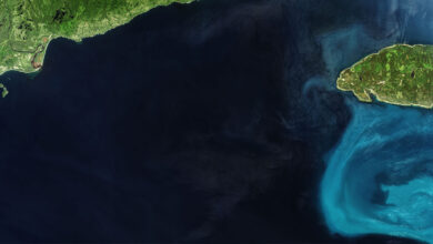 Photo of NASA capta desde el espacio agua fosforescente en océano de Canadá