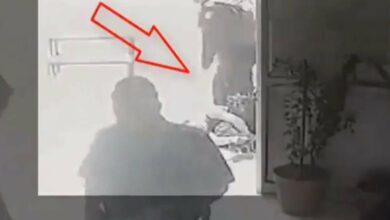 """Photo of """"Voy a intervenir"""": AMLO declara ante el caso de José Eduardo"""