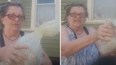 Photo of Mujer tira las cenizas de su marido a la basura
