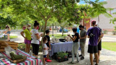 """Photo of Con apoyo municipal, impulsan """"Mercado Cero Basura"""" en pro del medio ambiente"""