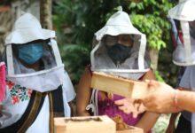Photo of Semujeres refrenda compromiso con impulsar a yucatecas en comunidades rurales