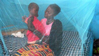Photo of OMS valida la primera vacuna contra la malaria en niños
