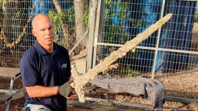 Photo of Buzo encuentra en Israel espada de las cruzadas de hace 900 años de antigüedad